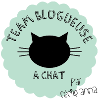 Team blogueuse à chat