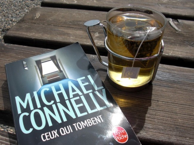 Michael Connelly ceux qui tombent