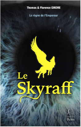 Skyraff photo couverture